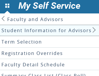 Graphic showing Student Information for Advisors.