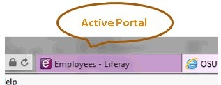 Graphic showing Active Portal screen.