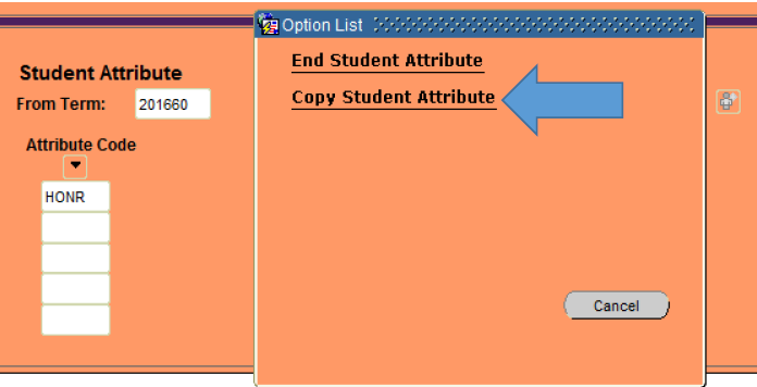 Graphic showing location of copy student attribute.